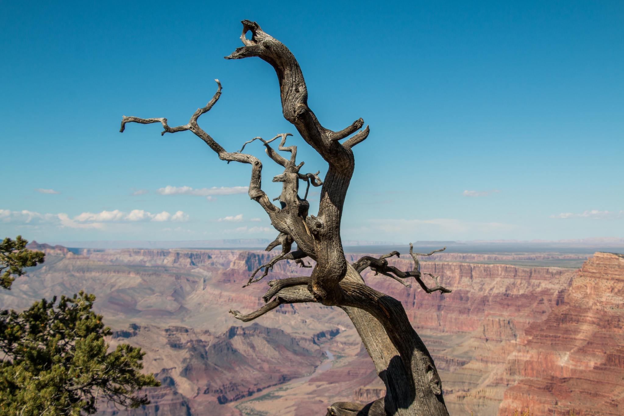 weather september grand canyon