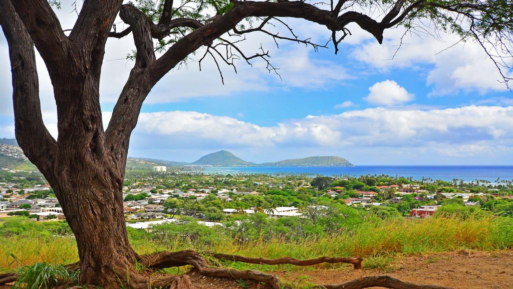 Tiempo Diciembre Hawaii