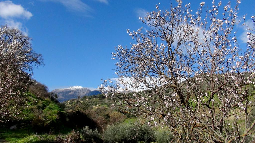 Weather-February-Crete