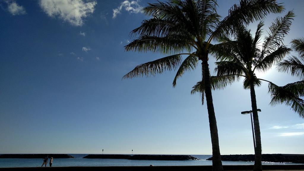 Tiempo Febrero Hawaii
