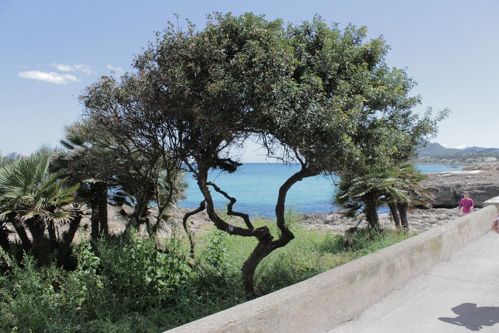Weather-May-Mallorca