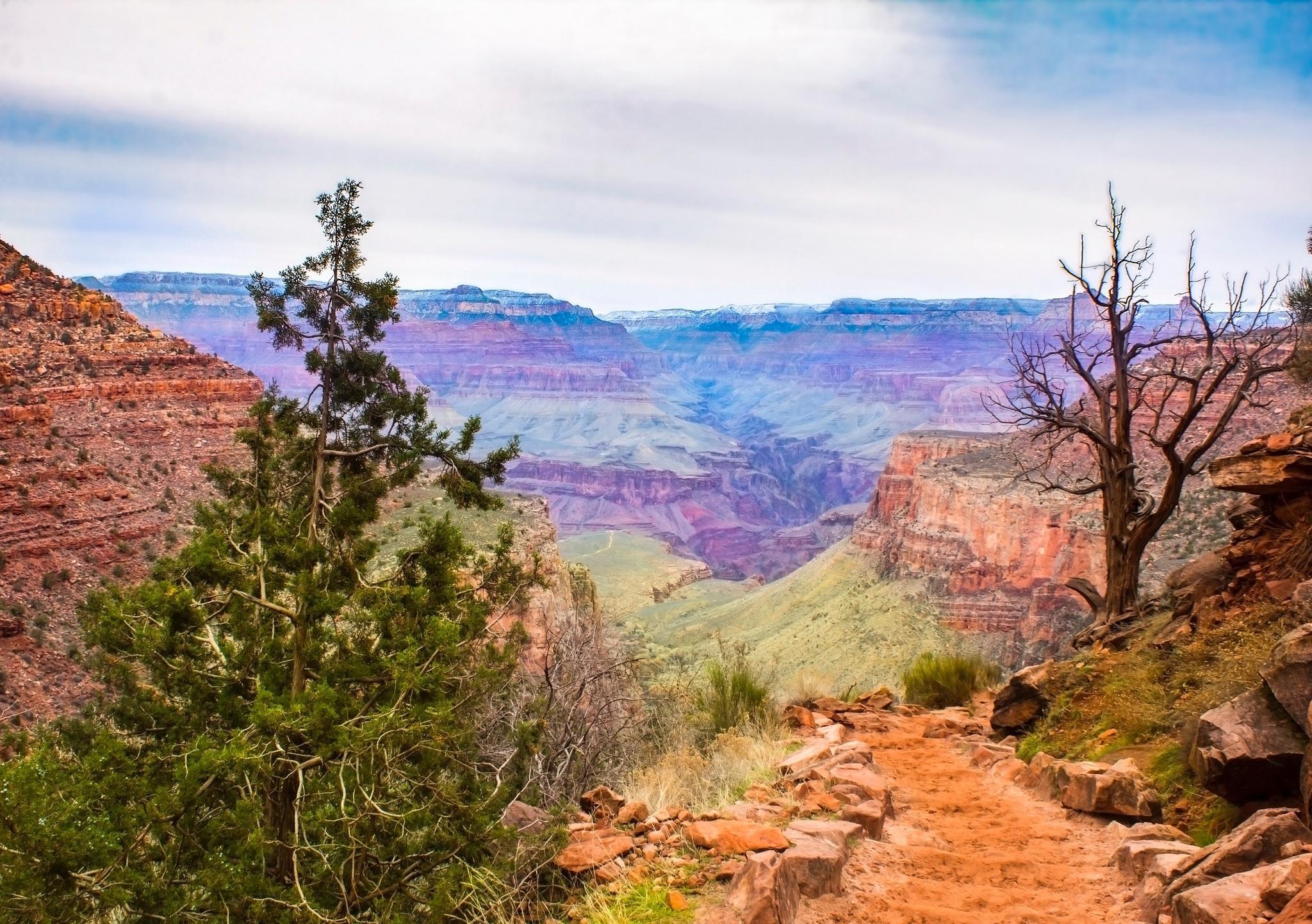 weather january grand canyon
